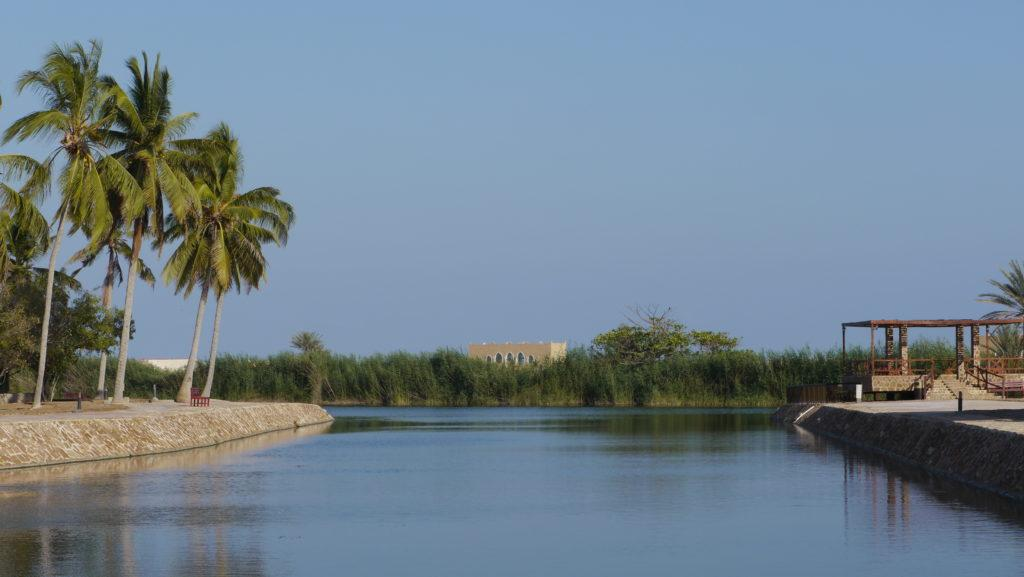 Khor Baleed or Baleed lagoon is surrounding the al-Baleed Archeological Park (Unesco) in Salalah. It used to serve as natural berth for the ships exporting frankincense. Salalah city tour.