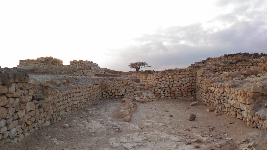 Ruins of Samharam Unesco World Heritage site. Major port for frankincense trade. Salalah East trip.